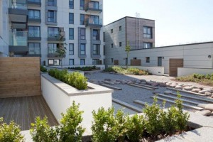 Roof garden with plants and planters with Jabite insulation